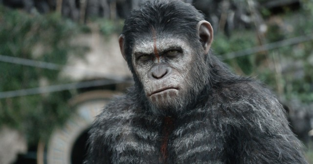 La planète des singes 2 - Image (3)